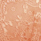 apricot 1780
